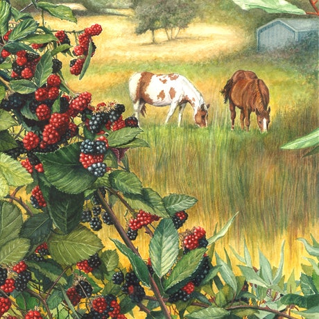 (CreativeWork) Abundance - Country Farm Landscape with Horses by Jillian Crider. Watercolour Paint. Shop online at Bluethumb.