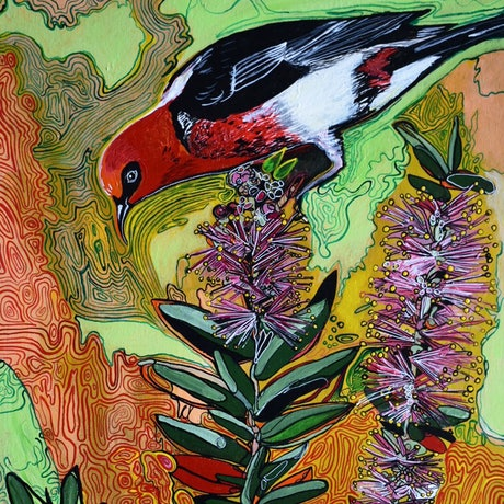 (CreativeWork) Scarlet Honeyeater by Naomi Malone. Acrylic Paint. Shop online at Bluethumb.