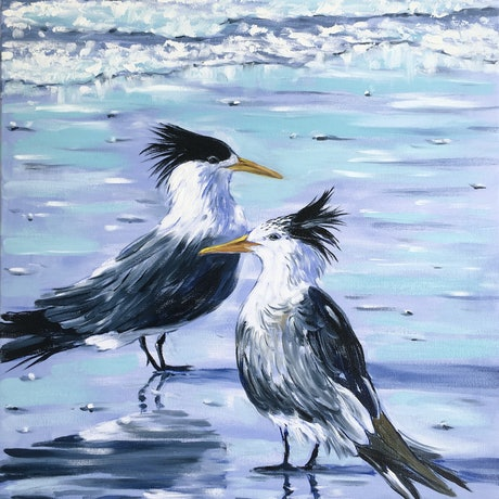 (CreativeWork) Crested terns at Harry Hills Beach by Irina Redine. Oil Paint. Shop online at Bluethumb.