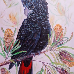 (CreativeWork) Give me a home among the banksia's by Joanne Scriha. oil-painting. Shop online at Bluethumb.
