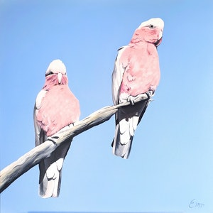 (CreativeWork) Sun kissed galahs by Emma Duck. oil-painting. Shop online at Bluethumb.