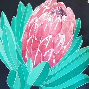 (CreativeWork) Protea study by Anna Turnbull. #<Filter:0x00007fa537c12198>. Shop online at Bluethumb.