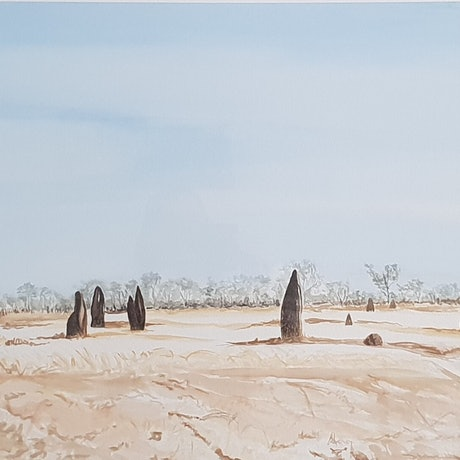 (CreativeWork) Kakadu: The Dry by Vanessa Whittington. Watercolour Paint. Shop online at Bluethumb.