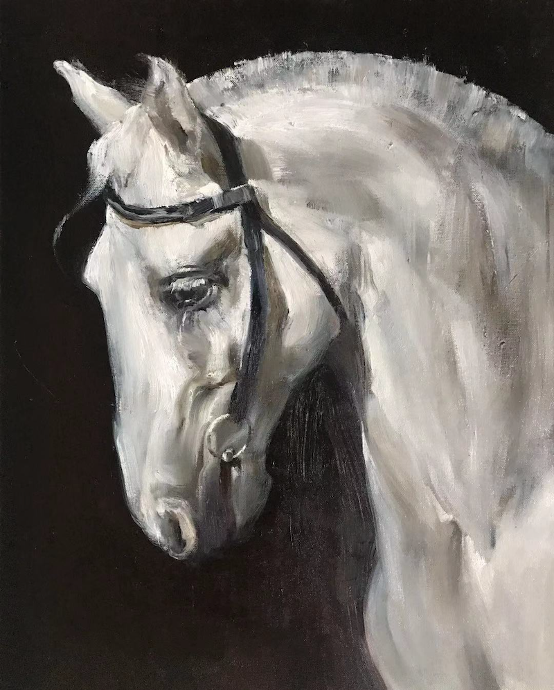 (CreativeWork) White Horse by Li Zhang. oil-painting. Shop online at Bluethumb.
