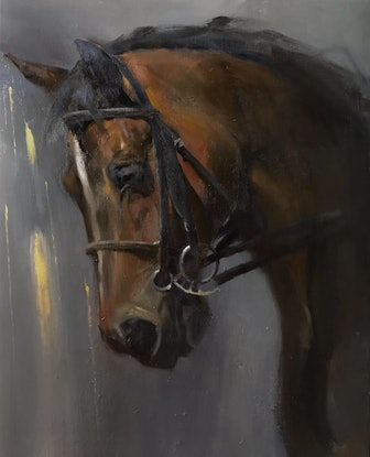 (CreativeWork) Horse by Li Zhang. Oil Paint. Shop online at Bluethumb.
