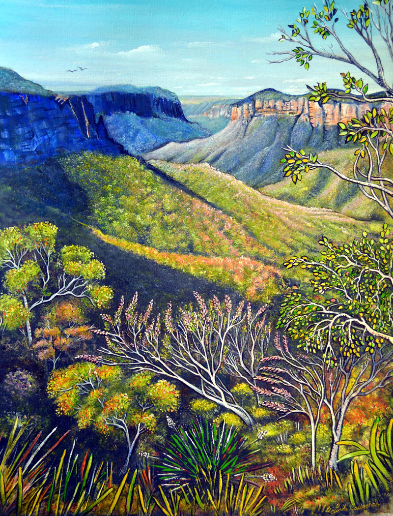 (CreativeWork) Govetts Leap Lookout, Blue Mountains by Linda Callaghan. #<Filter:0x00007fb2a0b67d30>. Shop online at Bluethumb.