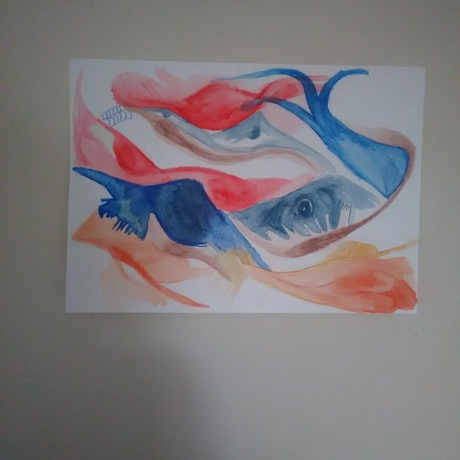 (CreativeWork) Feeling Fishy by Mitch Ianni. Watercolour Paint. Shop online at Bluethumb.