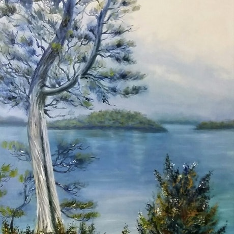 (CreativeWork) 'Dove Lake, Tas,' by Susan Capan. Oil Paint. Shop online at Bluethumb.