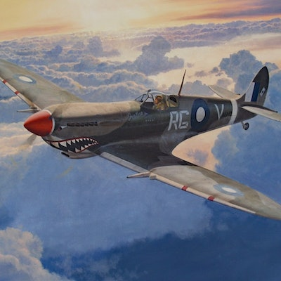 (CreativeWork) Wing Commander Gibbes in his Spitfire Mk.8 by Steve Heyen. Oil Paint. Shop online at Bluethumb.