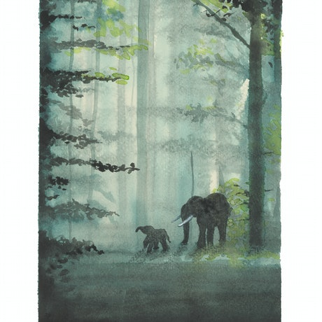 (CreativeWork) Circles in a Forest - Kringe in n bos by Sandra Benskin. Watercolour Paint. Shop online at Bluethumb.