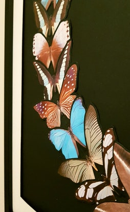 (CreativeWork) 'Here rest your wings - #4'   by Karen Coull. #<Filter:0x00007f7ba030de28>. Shop online at Bluethumb.