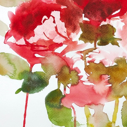 (CreativeWork) Peony Fair by Jill Bryant. Watercolour Paint. Shop online at Bluethumb.