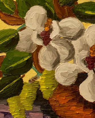 (CreativeWork) Native Pear and Magnolia  by Elisabeth Howlett. Oil Paint. Shop online at Bluethumb.