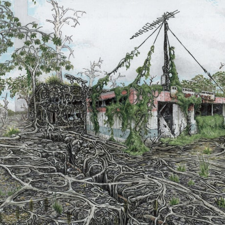 (CreativeWork) Roots by Lewis Smart. Drawings. Shop online at Bluethumb.