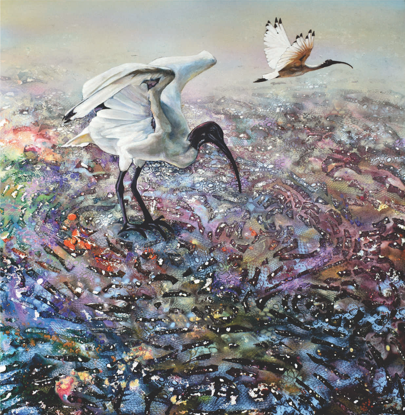 (CreativeWork) Ibis Foraging on the Mudflats by Bronwyn Doherty. arcylic-painting. Shop online at Bluethumb.