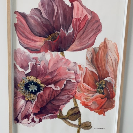 (CreativeWork) Poppies 2 by Julie Christensen. Watercolour Paint. Shop online at Bluethumb.