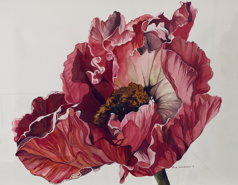 (CreativeWork) In Full Bloom by Julie Christensen. watercolour. Shop online at Bluethumb.
