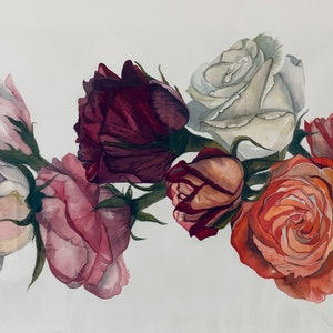 (CreativeWork) Garland of Roses by Julie Christensen. watercolour. Shop online at Bluethumb.