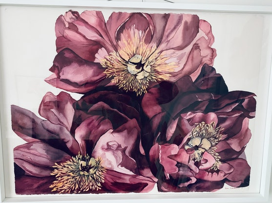 (CreativeWork) Peony 1 by Julie Christensen. Watercolour Paint. Shop online at Bluethumb.