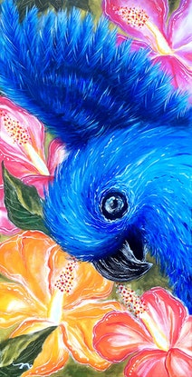 (CreativeWork) Blue Macaw Rio by Nevena Nikolic. Acrylic Paint. Shop online at Bluethumb.