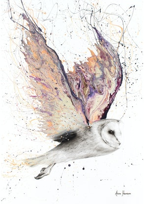 (CreativeWork) Heart Winged Owl - Limited Edition Gallery Print - Final Print Ed. 100 of 100 by Ashvin Harrison. Print. Shop online at Bluethumb.