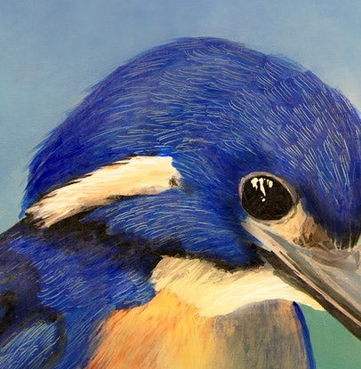 (CreativeWork) Azure Kingfisher  by Robert Corcoran. Acrylic Paint. Shop online at Bluethumb.