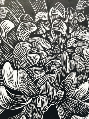 (CreativeWork) Chrysanthemum flower, linocut print  Ed. 4 of 10 by Matthew Broughton. Print. Shop online at Bluethumb.