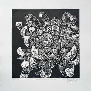 (CreativeWork) Chrysanthemum flower, linocut print  Ed. 4 of 10 by Matthew Broughton. #<Filter:0x00007fbcb3a71a08>. Shop online at Bluethumb.