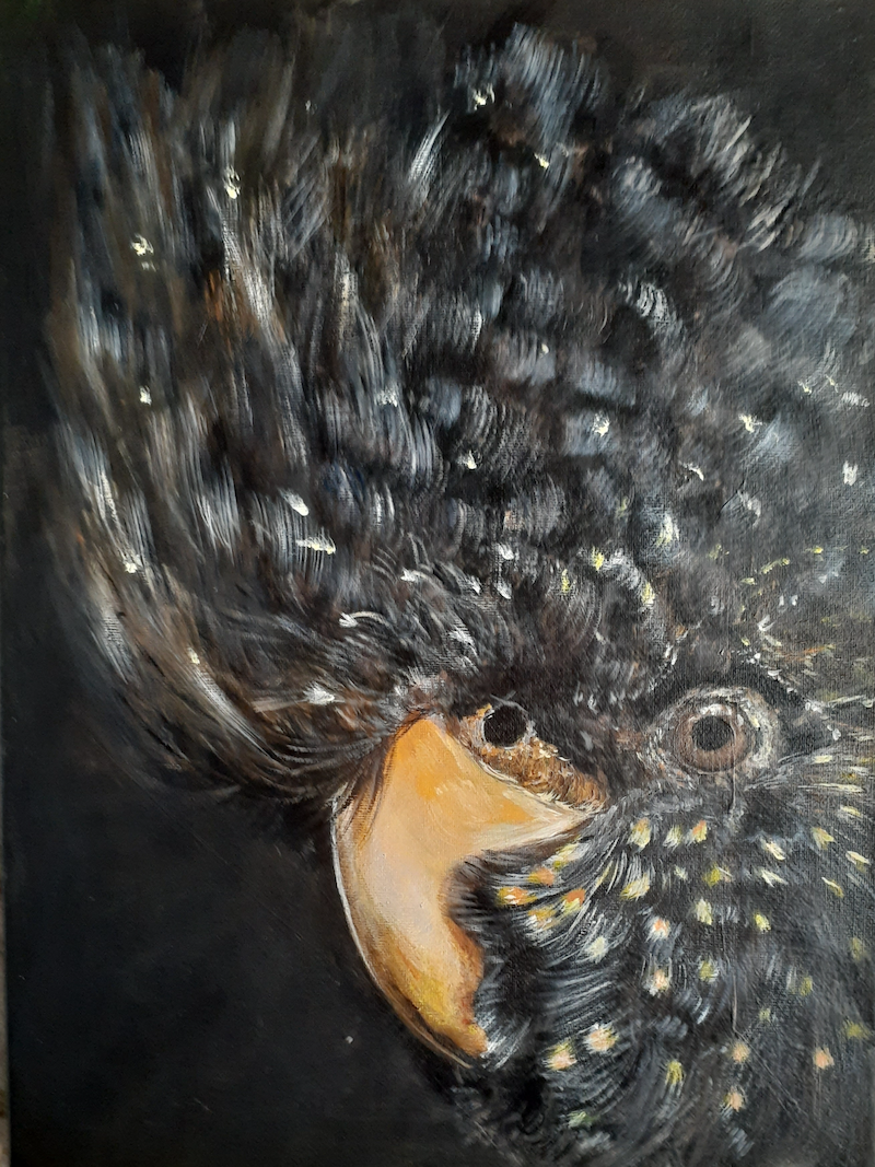 (CreativeWork) Cockatoo In Black by Joy Brown. Acrylic Paint. Shop online at Bluethumb.