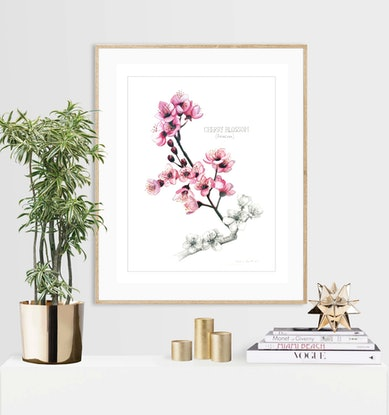 (CreativeWork) Botanical Collection (5 watercolour paintings) limited edition prints Ed. 11 of 100 by Darlene Lavett. Print. Shop online at Bluethumb.