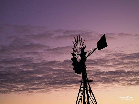 (CreativeWork) Windmill Colours by Indya Blake. Photograph. Shop online at Bluethumb.