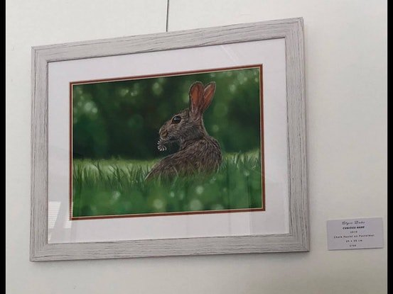 (CreativeWork) Curious Hare by Alyce Duhs. Drawings. Shop online at Bluethumb.