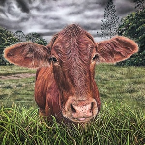 (CreativeWork) The Cow Before the Storm by Alyce Duhs. drawing. Shop online at Bluethumb.