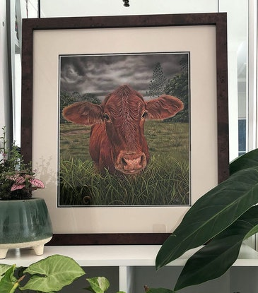 (CreativeWork) The Cow Before the Storm by Alyce Duhs. Drawings. Shop online at Bluethumb.