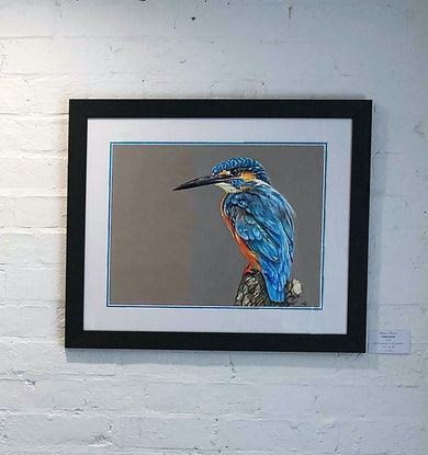(CreativeWork) Kingfisher by Alyce Duhs. Drawings. Shop online at Bluethumb.