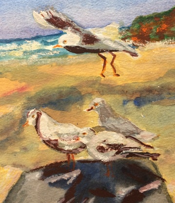 (CreativeWork) Seagull in Flight by Margaret Morgan (Watkins). Watercolour Paint. Shop online at Bluethumb.