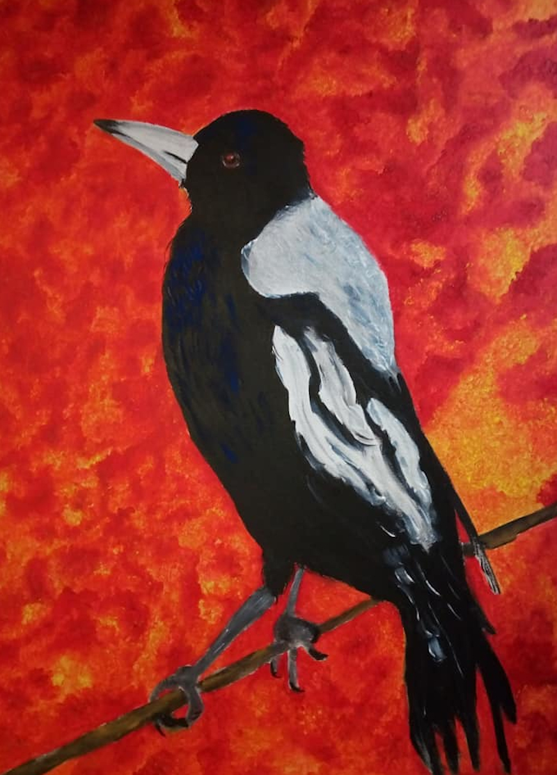(CreativeWork) Bush-fire Sunset Magpie by Ilanit Pocock (Vanu). Acrylic Paint. Shop online at Bluethumb.