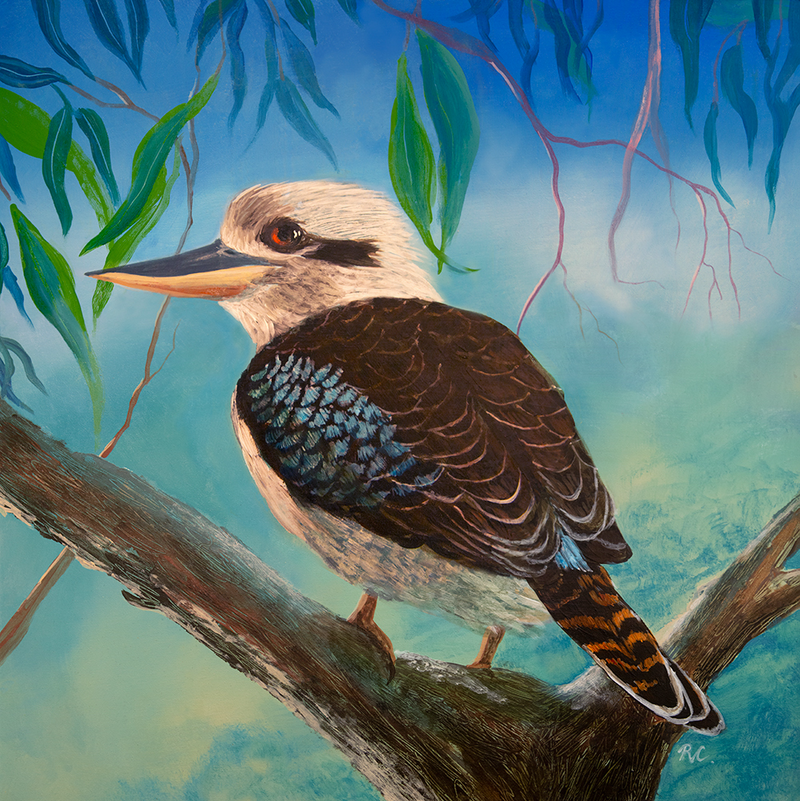 "(CreativeWork) Kookaburra  , ""Not Laughing' by Robert Corcoran. Acrylic Paint. Shop online at Bluethumb."