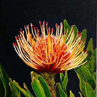 (CreativeWork) Little Beauty by Hayley Kruger. acrylic-painting. Shop online at Bluethumb.