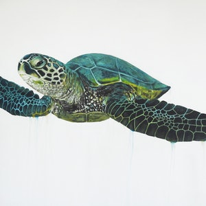(CreativeWork) Green Sea Turtle by Naomi Veitch. acrylic-painting. Shop online at Bluethumb.