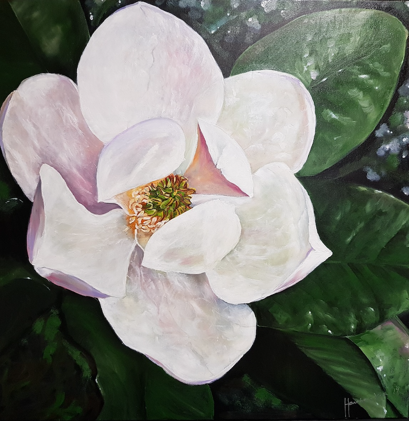 (CreativeWork) Night Magnolia by ALAN HEATHER-XIA. oil-painting. Shop online at Bluethumb.