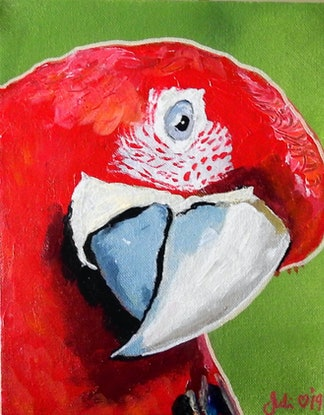 (CreativeWork) Parrot by julie hollis. Acrylic Paint. Shop online at Bluethumb.