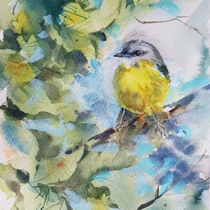 (CreativeWork) Eastern Yellow Robin by Anica Amphlett. watercolour. Shop online at Bluethumb.