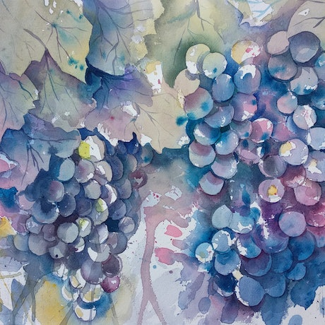 (CreativeWork) Grapes ( Original watercolor)  by Irina Iris. Watercolour Paint. Shop online at Bluethumb.