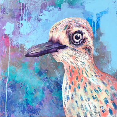 (CreativeWork) Bush stone curlew by Kylee Rees. acrylic-painting. Shop online at Bluethumb.