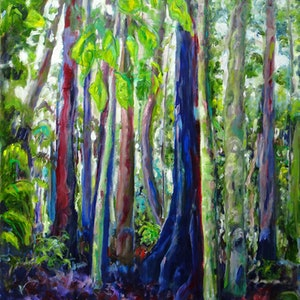 (CreativeWork) Dorrigo National Park - Rain Forest by Maureen Finck. #<Filter:0x000055d8425a8cd0>. Shop online at Bluethumb.
