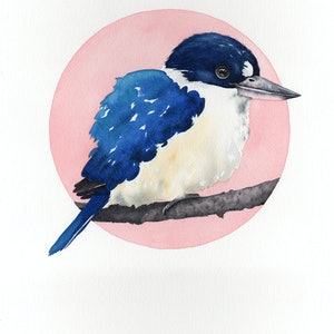 (CreativeWork) Forest Kingfisher – Watercolour A3  by Clare McCartney. watercolour. Shop online at Bluethumb.