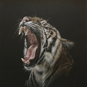 (CreativeWork) Contagious yawn by Candace Slager. drawing. Shop online at Bluethumb.