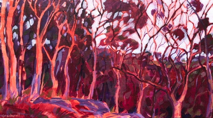 (CreativeWork) Sydney Apple Gum Sunset  by Kate Gradwell. #<Filter:0x00007fef079a91d0>. Shop online at Bluethumb.