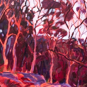 (CreativeWork) Sydney Apple Gum Sunset  by Kate Gradwell. acrylic-painting. Shop online at Bluethumb.